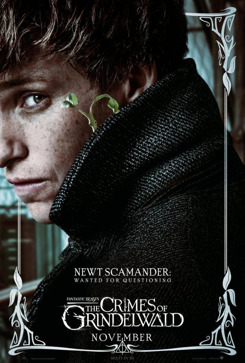 newt-scamander-poster-os-crimes-de-grindelwald-m7046-5469716-2552267