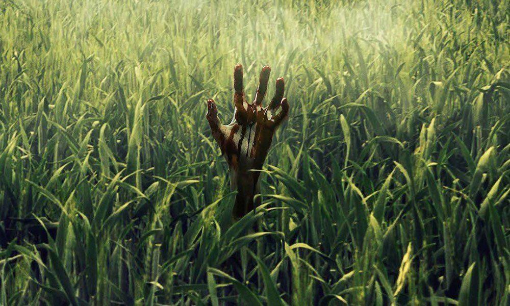 thumb_in-the-tall-grass-netflix-stephen-king-7431372-6956542