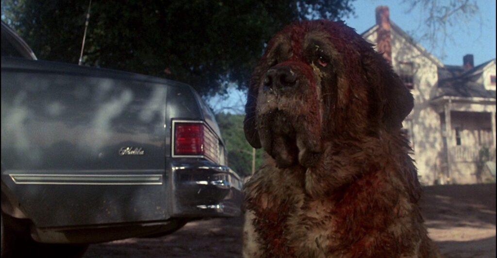 Cujo - Filmes de terror da Netflix